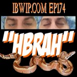 IBWIP_0174